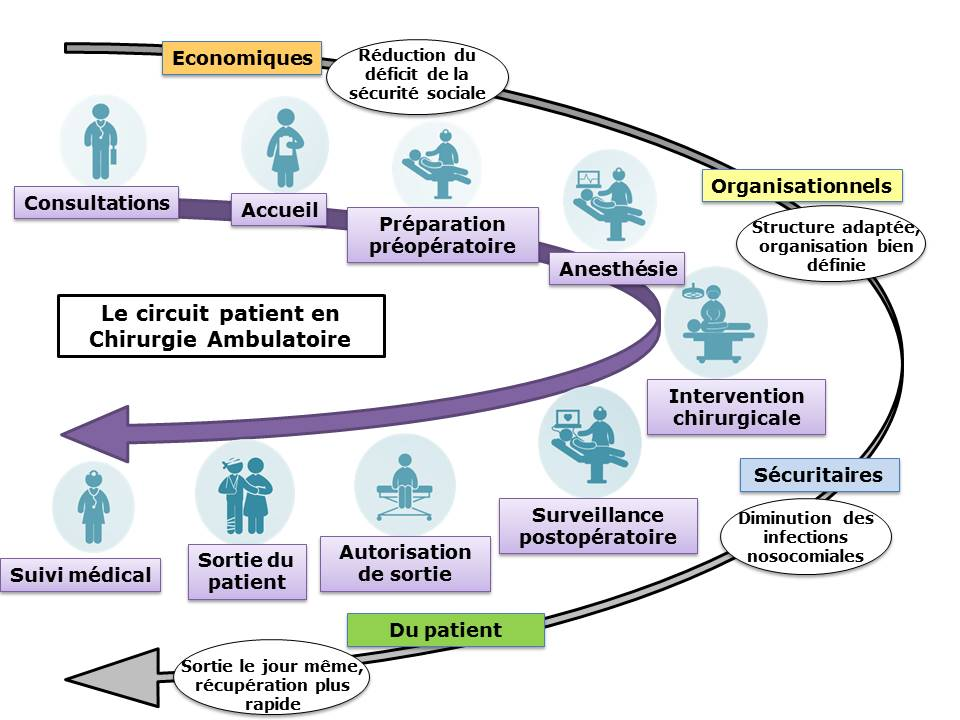 Organisation Et Innovation En Chirurgie Ambulatoire Role
